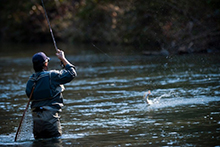 Fishing and hunting in the Ellijay area