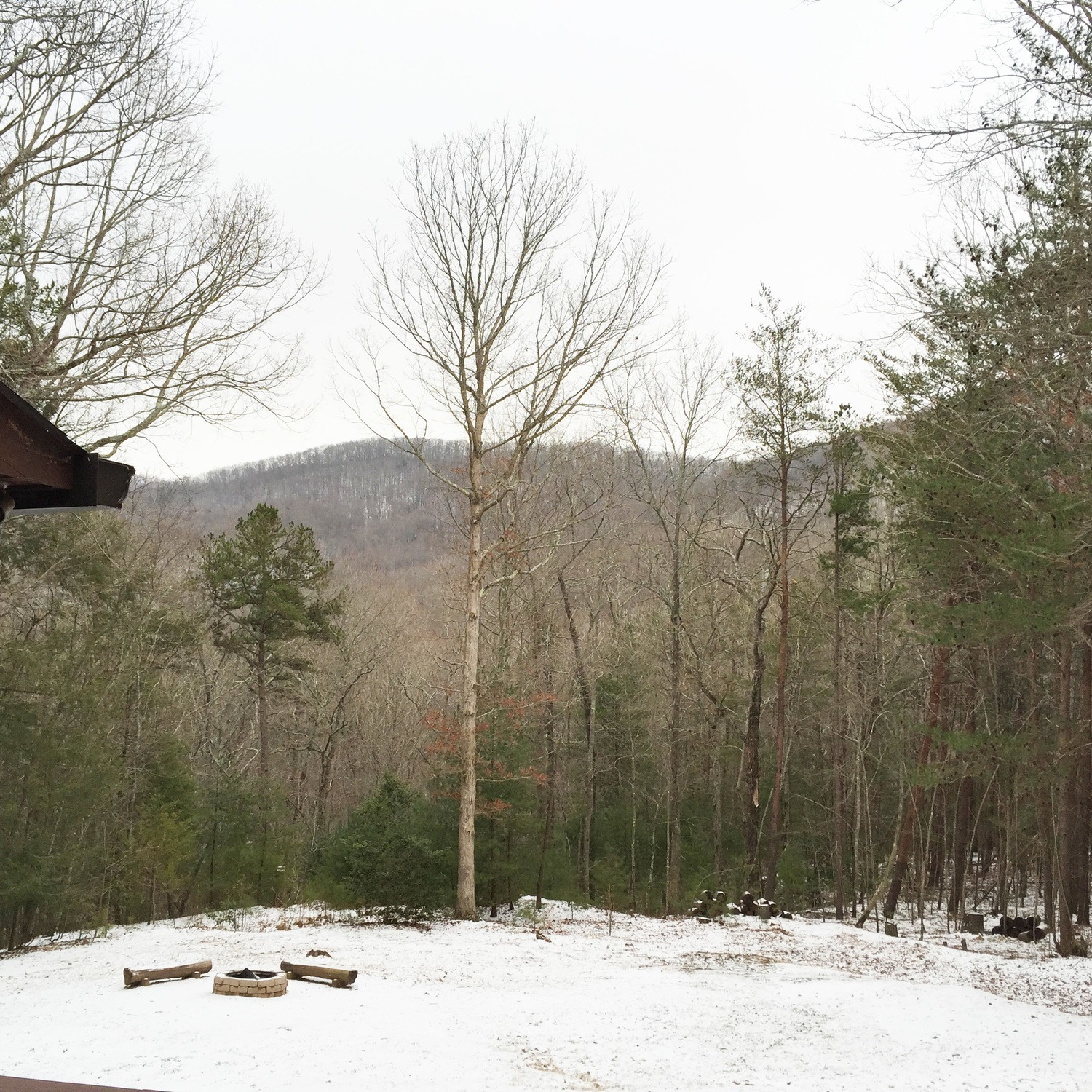 About Blue Sky Cabin Rentals Of Ellijay Blue Ridge And